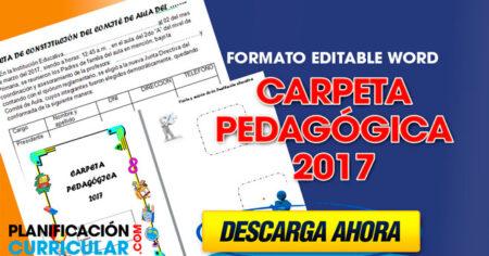 Carpeta pedagógica 2017 Completo EDITABLE