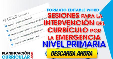 Sesiones Para La Intervención Del Currículo Por La Emergencia a NIVEL PRIMARIA