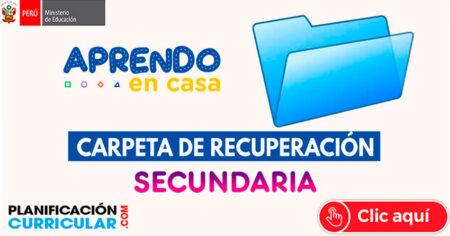 CARPETA DE RECUPERACIÓN SECUNDARIA SOBRE EL TRABAJO REMOTO 2020
