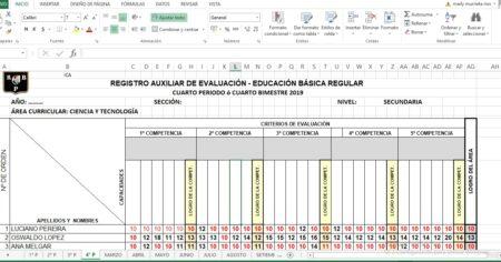 REGISTRO DE EVALUACIÓN BÁSICA DE CIENCIA Y TECNOLOGÍA 2021