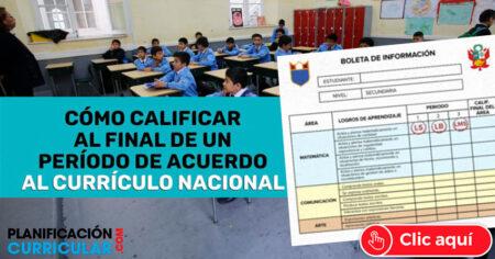 FORMA DE CALIFICAR AL FINAL DE UN PERÍODO DE ACUERDO AL CURRÍCULO NACIONAL