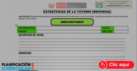 FABULOSO CUADERNO ANECDOTARIO ESTRATEGIAS DE LA TUTORÍA INDIVIDUAL