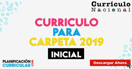 CURRÍCULO PARA CARPETA INICIAL 2019