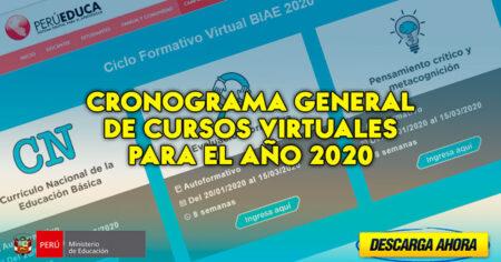 CRONOGRAMAS DE LOS CURSOS VIRTUALES AÑO 2020 (PERUEDUCA)