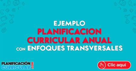 EJEMPLO DE PLANIFICACIÓN ANUAL, COMPETENCIAS Y ENFOQUES TRANSVERSALES