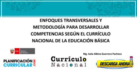 ENFOQUES TRANSVERSALES Y METODOLOGÍA PARA DESARROLLAR COMPETENCIAS SEGÚN EL CURRÍCULO NACIONAL DE LA EDUCACIÓN BÁSICA