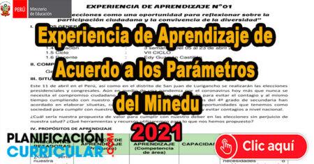 Experiencia de Aprendizaje de acuerdo a parámetros del MINEDU 2021