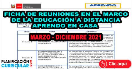 FICHA DE REUNIONES DE TRABAJO COLEGIADO EN EL MARCO DE LA EDUCACION A DISTANCIA – APRENDO EN CASA - MARZO A DICIEMBRE 2021