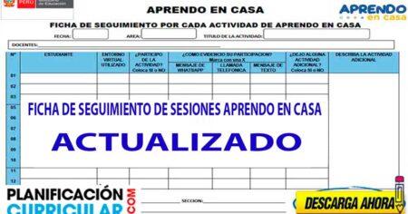 FICHA DE SEGUIMIENTO DE SESIONES EN WORD Y EXCEL