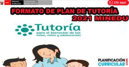 FORMATO DE PLAN DE TUTORÍA 2021, ORIENTACIÓN EDUCATIVA EN EL MARCO DE LA EDUCACIÓN A DISTANCIA - MINEDU