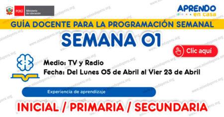 GUÍA DOCENTE TV y RADIO para la PROGRAMACIÓN SEMANAL - SEMANA 01 - 2021