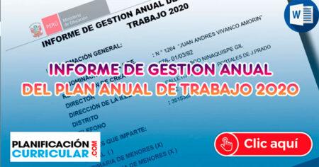 INFORME DE GESTIÓN ANUAL DEL PLAN ANUAL DEL TRABAJO REMOTO 2020 - APRENDO EN CASA