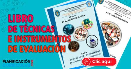 FABULOSO LIBRO DE TÉCNICAS E INSTRUMENTOS DE EVALUACIÓN