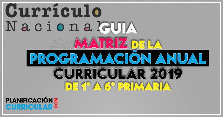 Matriz De La Programación Anual Curricular 2019 De 1 A 6