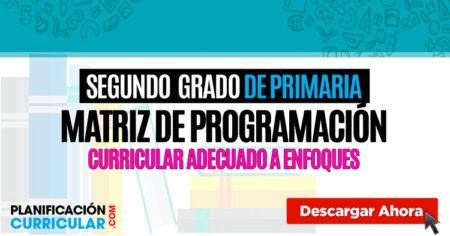 Matriz de programación curricular SEGUNDO GRADO