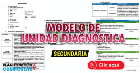 FANTÁSTICO MODELO DE UNIDAD DE DIAGNOSTICA