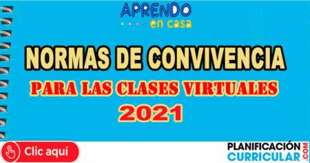 NORMAS DE CONVIVENCIA PARA LAS CLASES VIRTUALES 2021