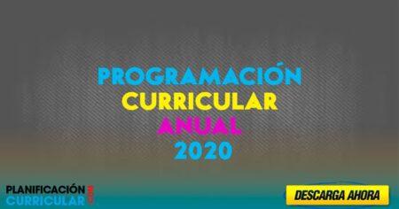 PROGRAMACIÓN CURRICULAR ANUAL DE MATEMÁTICA 2020 [Editable]
