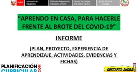 PLAN, PROYECTO EXPERIENCIA DE APRENDIZAJE ACTIVIDADES Y EVIDENCIAS