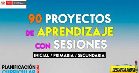 ¡FABULOSOS! 90 PROYECTOS DE APRENDIZAJE CON SESIONES PARA INICIAL PRIMARIA Y SECUNDARIA