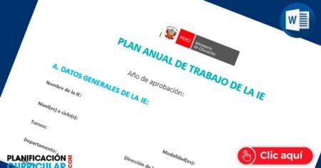 Plan de trabajo anual de la IE