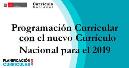 Programación Curricular Nacional para el 2019