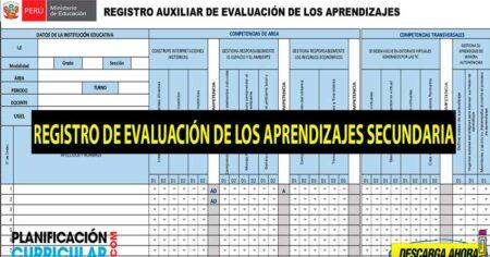 REGISTRO AUXILIAR DE EVALUACIÓN DE LOS APRENDIZAJES - SECUNDARIA