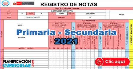 REGISTRO DE NOTAS PRIMARIA Y SECUNDARIA 2021 - EDITABLE