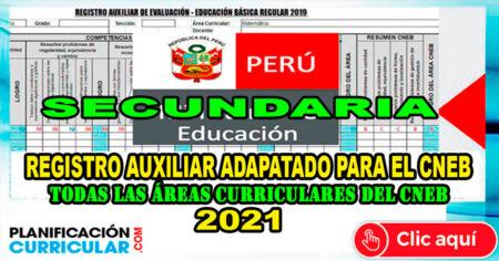 REGISTRO DE NOTAS PARA NIVEL SECUNDARIA 2021 CNEB (Editable para todas las áreas)