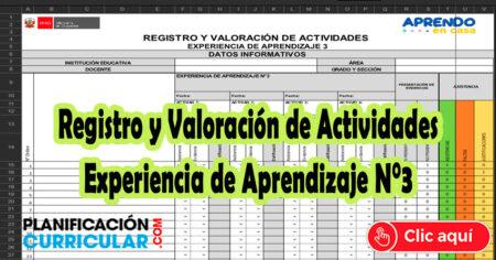 Registro y Valoración de Actividades Experiencia de Aprendizaje N° 3