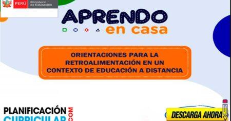 ORIENTACIONES PARA LA RETROALIMENTACIÓN EN UN CONTEXTO DE EDUCACIÓN A DISTANCIA