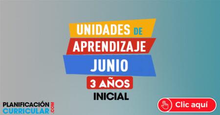 UNIDADES DE APRENDIZAJE JUNIO 3 AÑOS 2019