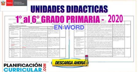 UNIDADES DE APRENDIZAJE PARA EDUCACIÓN PRIMARIA - MINEDU