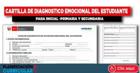 FICHA DE DIAGNÓSTICO DE SITUACIÓN EMOCIONAL DEL ESTUDIANTE 2021