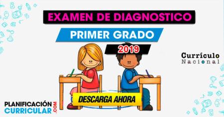 Examen de Diagnostico Primer Grado 2019 MINEDU
