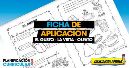 Fichas de aplicación el GUSTO la VISTA y OLFATO