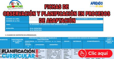 FICHAS DE OBSERVACIÓN Y PLANIFICACIÓN EN PROCESOS DE ADAPTACIÓN 2021