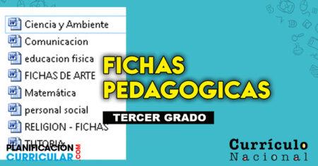 🗂FABULOSAS FICHAS PEDAGÓGICA PARA PRIMARIA GRADO 2020 EDITATABLE📎
