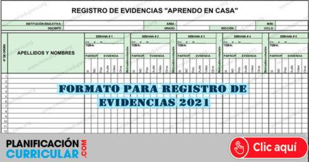 Formato para registro de evidencias (Excel) Aprendo en Casa