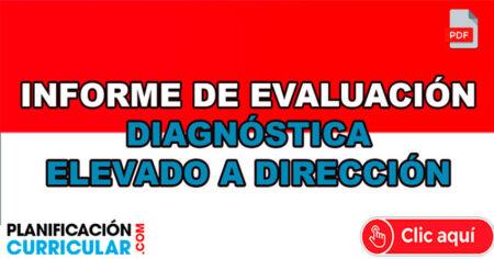 INFORME DE EVALUACIÓN DIAGNÓSTICA ELEVADO A DIRECCIÓN
