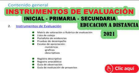 ¿ QUE SON INSTRUMENTOS DE EVALUACIÓN EN LA EDUCACIÓN A DISTANCIA 2021 INICIAL PRIMARIA SECUNDARIA