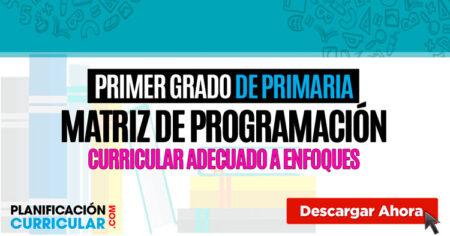 Matriz de programación curricular PRIMER GRADO