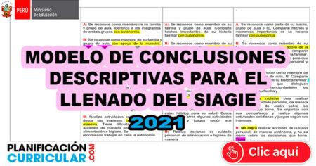 MODELOS de CONCLUSIONES DESCRIPTIVAS Para el LLENADO del SIAGIE 2021