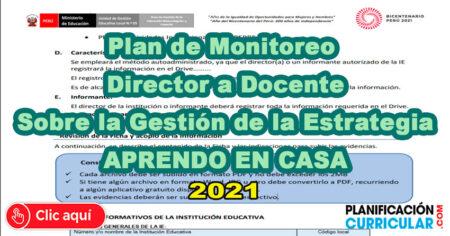 PLAN DE MONITOREO 2021 DE DIRECTOR A DOCENTE DE LAS IIEE. SOBRE LA GESTIÓN DE LA ESTRATEGIA APRENDO EN CASA