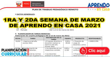PLAN DE TRABAJO REMOTO MARZO SEMANA 1 y 2 (APRENDO EN CASA 2021) INICIAL PRIMARIA Y SECUNDARIA