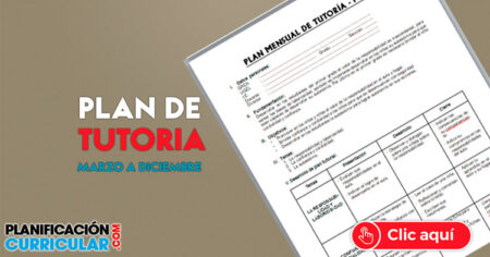 PLAN DE TUTORIA DE MARZO A DICIEMBRE 2019